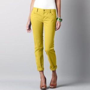 [LOFT] Yellow Curvy Straight Fit Jeans
